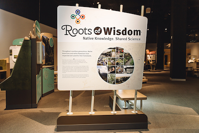 Roots of Wisdom Exhibit NC Arboretum