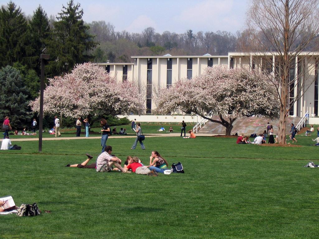 UNC Asheville Campus