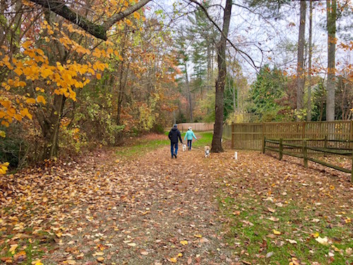 Walking Trails at Biltmore Lake