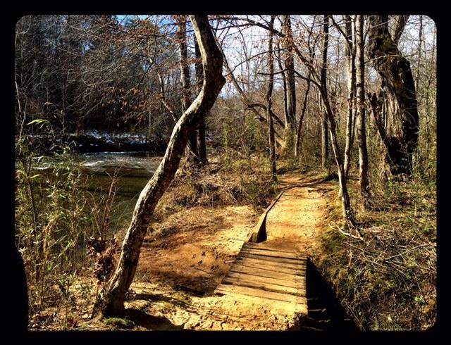 Warren Wilson Trails Asheville