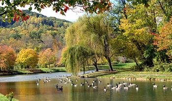 Lake View Park