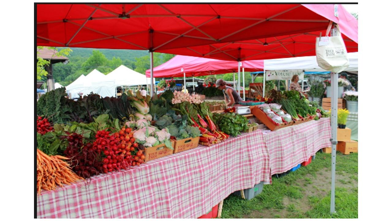 Norwich Farmers Market VT