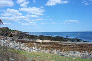 Shore Road view in Cape Neddick