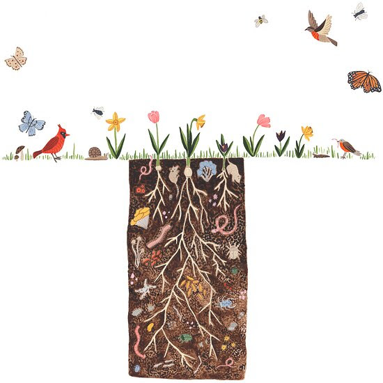 earth day birds plants flowers dirt soil