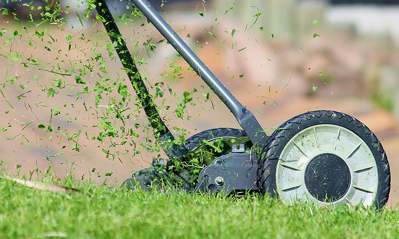 5 Tips for Summer Lawn Maintenance