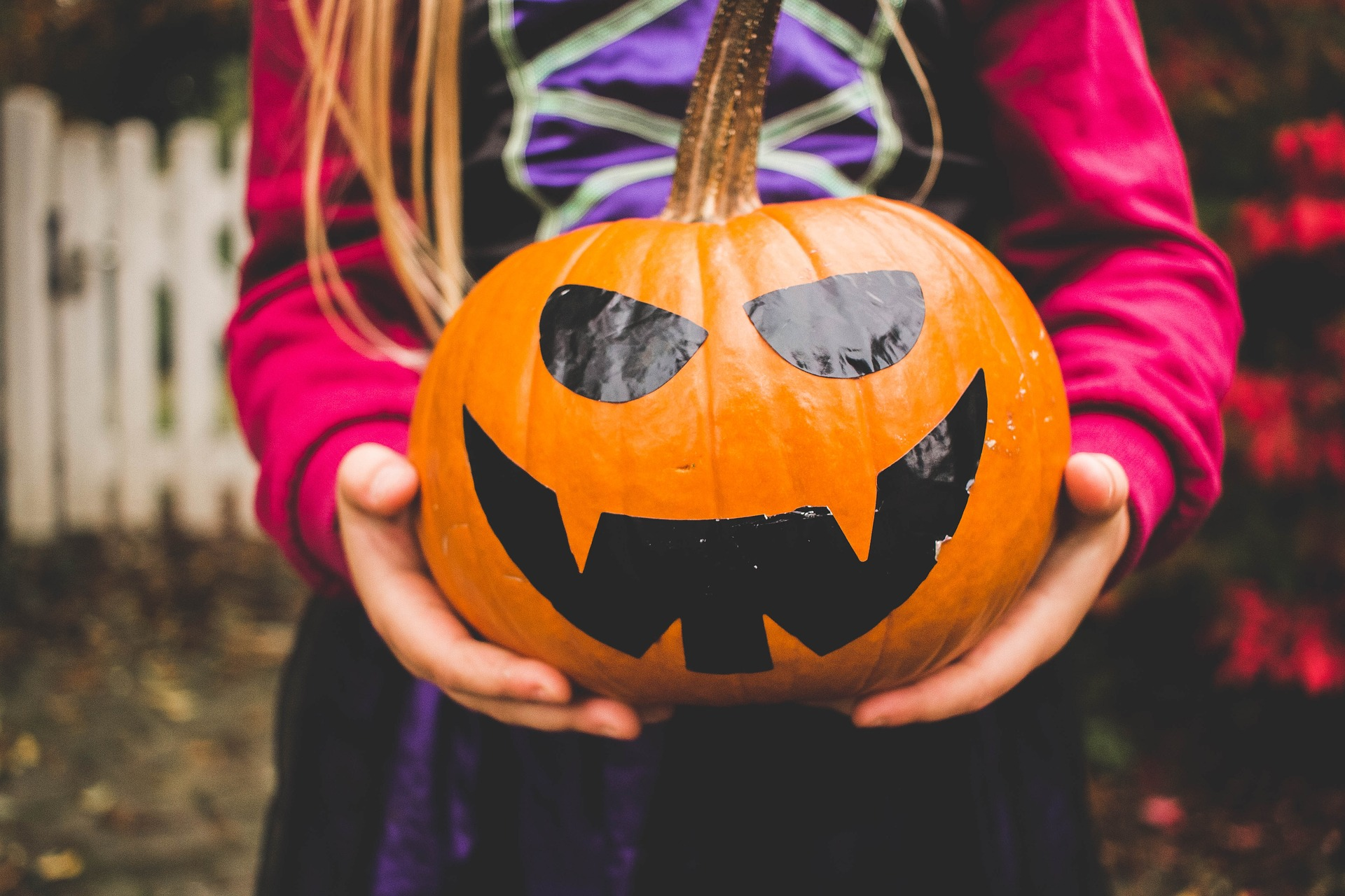 Halloween in Central Maine: Things to Do, See, and Eat