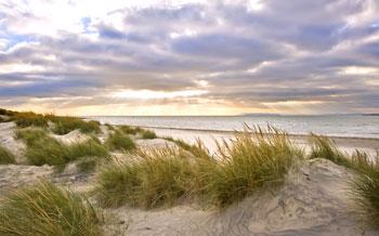Chilmark MA Beach