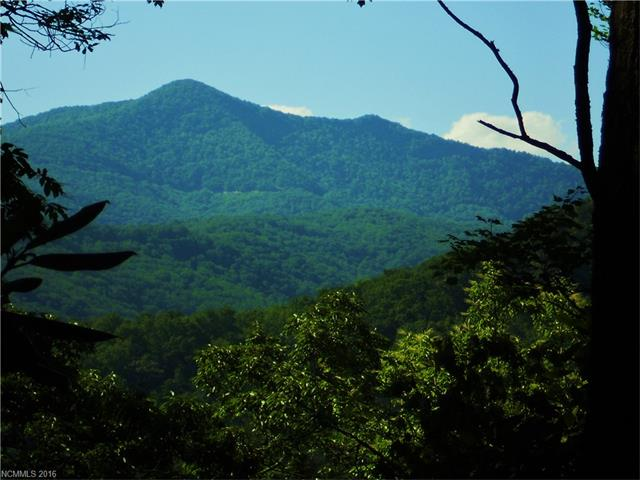 Swannanoa land with mountain views
