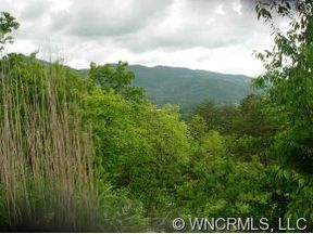 Asheville Land Listing