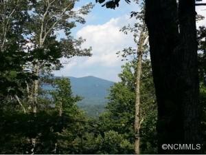 Asheville land sales increase.