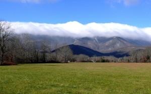 Black Mountain Views