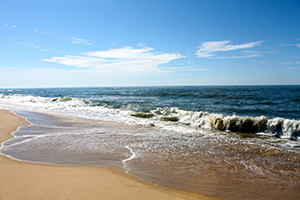 Beaches on Martha's Vineyard