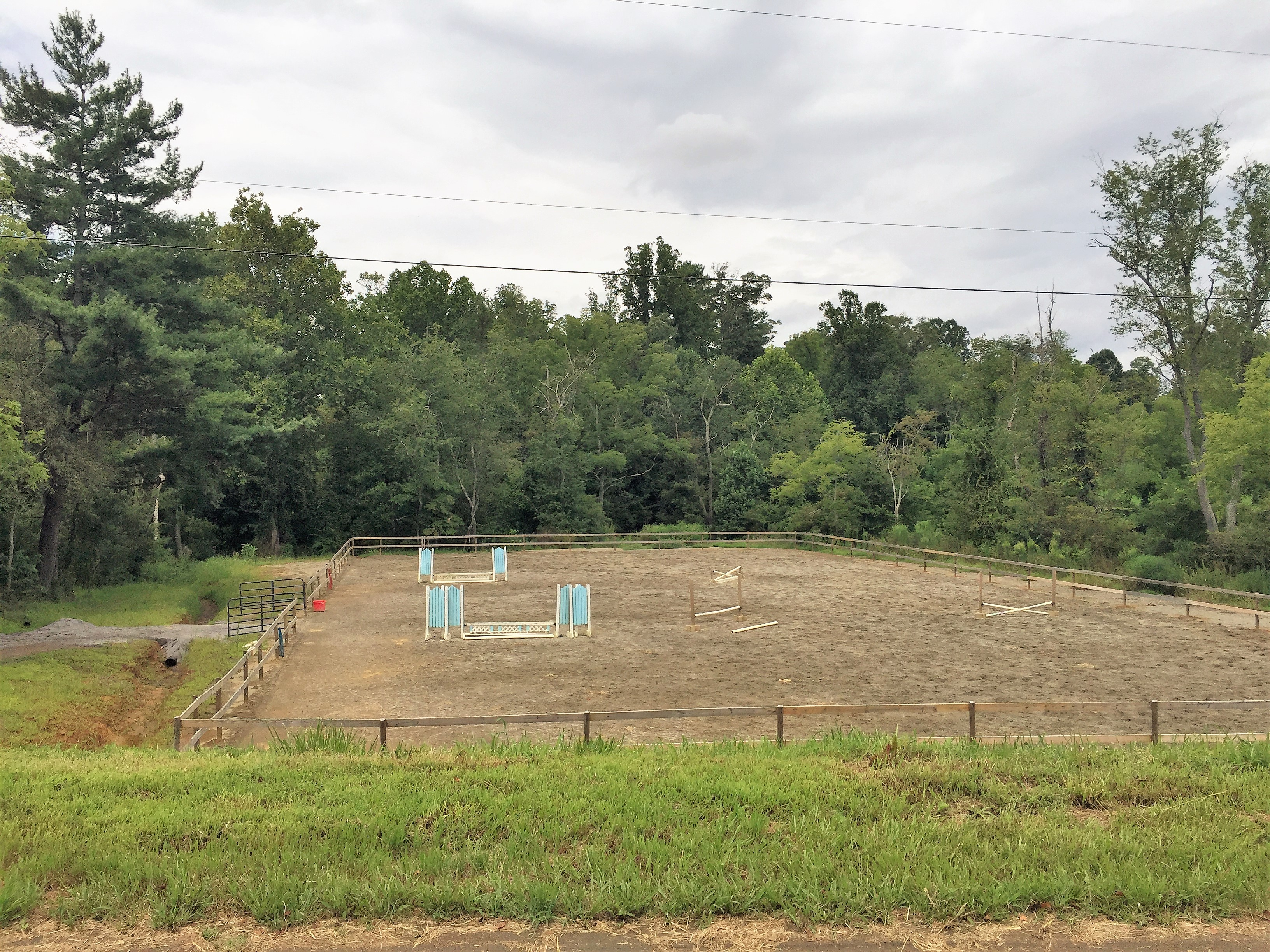 Mini Horse Farms For Sale NC