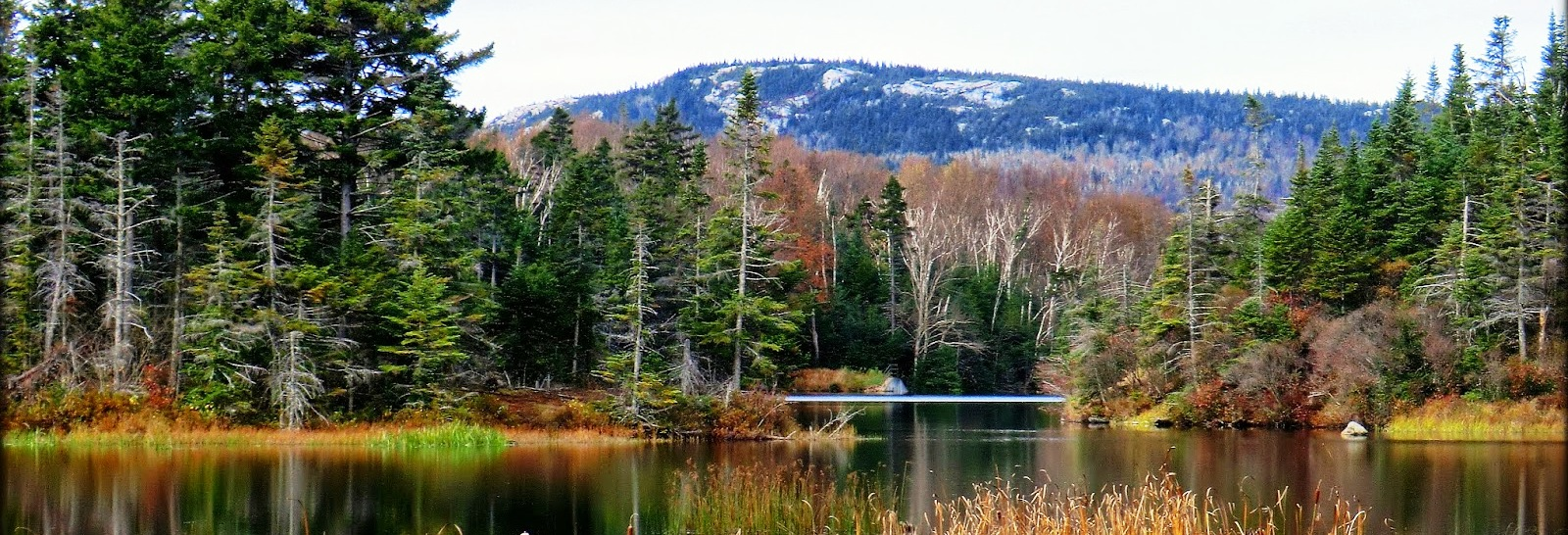 Long Pond, Benton, NH