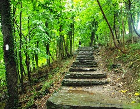 Appalachian Trail, Benton, NH