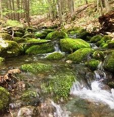 Rumney Rocks Day Use Area, Rumney, NH