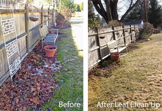 Before and after raking