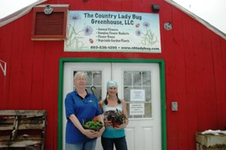 Country Lady Bug Greenhouse