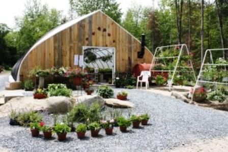 Contry Ladybug Greenhouse