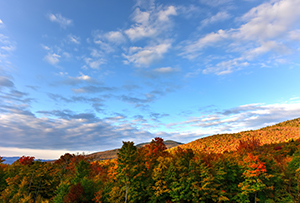fall foliage in vt