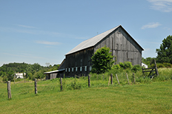 A rustic barn located in the rolling pastures in the town of Lyme, NH