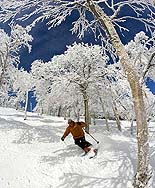 Sugarbush Skiing