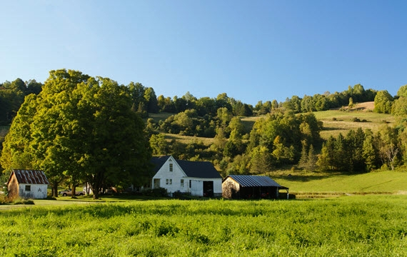 Vermont Real Estate Rental Services