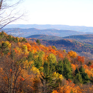 Mount Hunger Fall Foliage