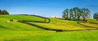 Upper Valley Farm