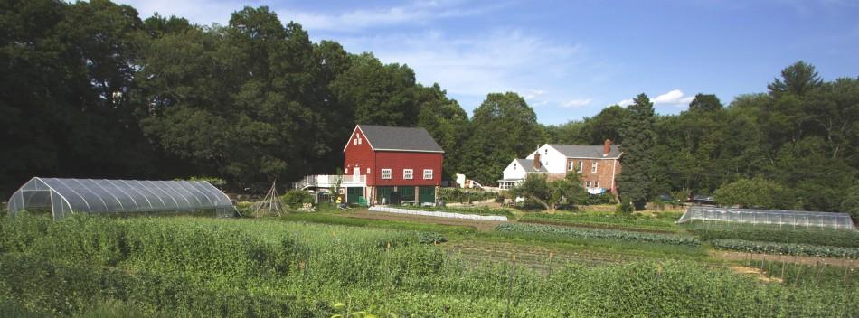 Newton Community Farm fall festival 2016