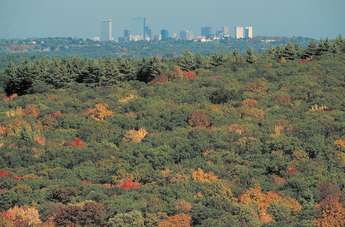 Best hikes near Boston