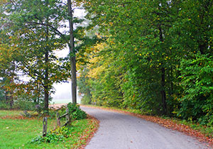 Danby Vermont Winding Road