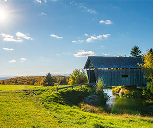 Covered Bridge in Vermont Field