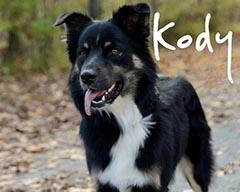 Rick's dog Kody