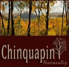Chinquapin in Cashiers NC