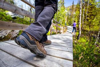 Waltham MA Walking Trails