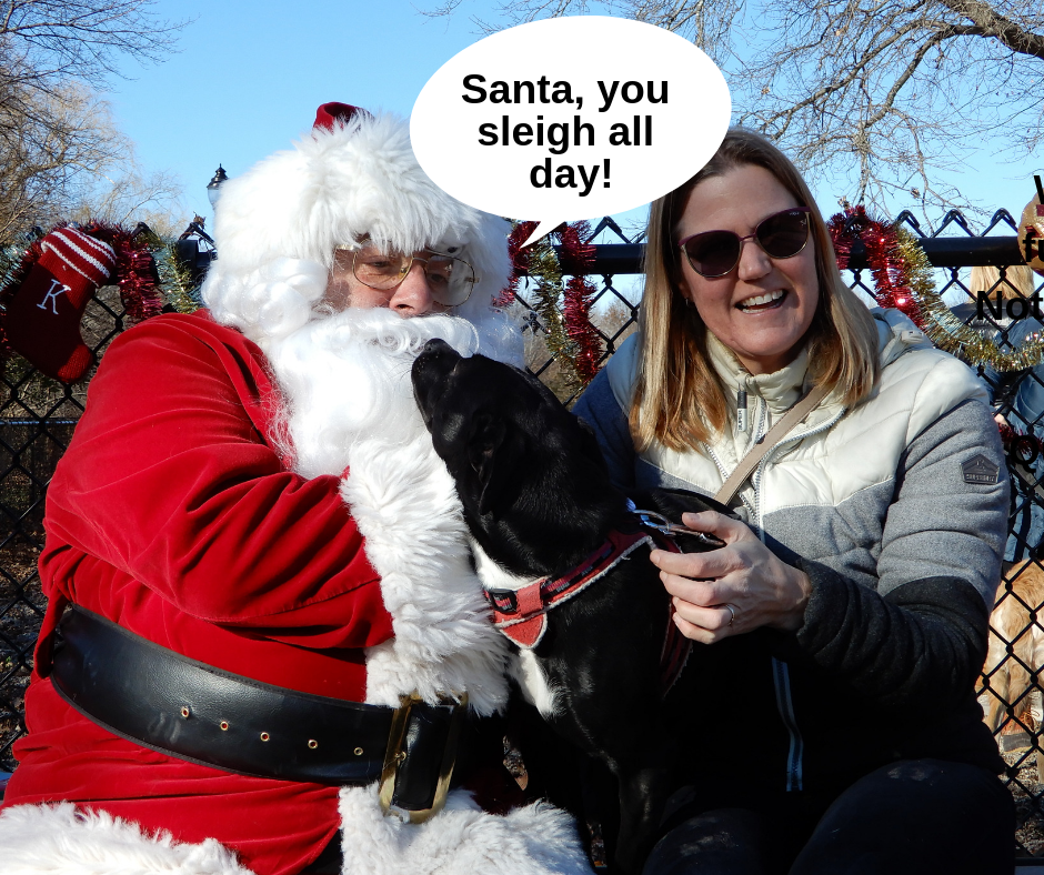 Santa Paws 2018, Sponsored by Steve McKenna & The Home Advantage Team