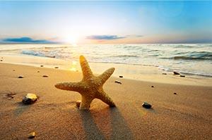 Shell Beach Florida