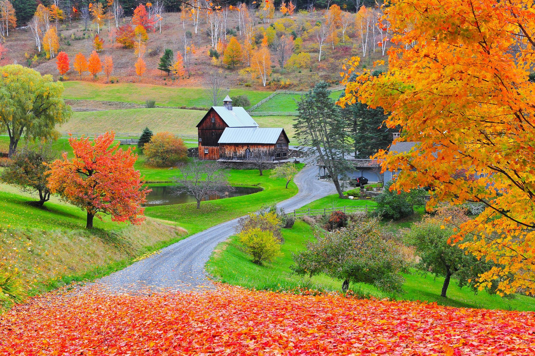 Fall Foliage Guide