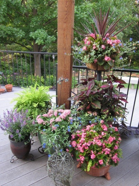 Container gardens and flowerpots
