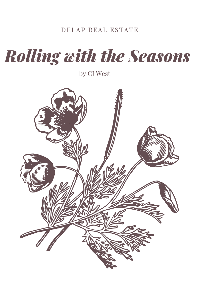 Delap Real Estate Rolling with the Seasons