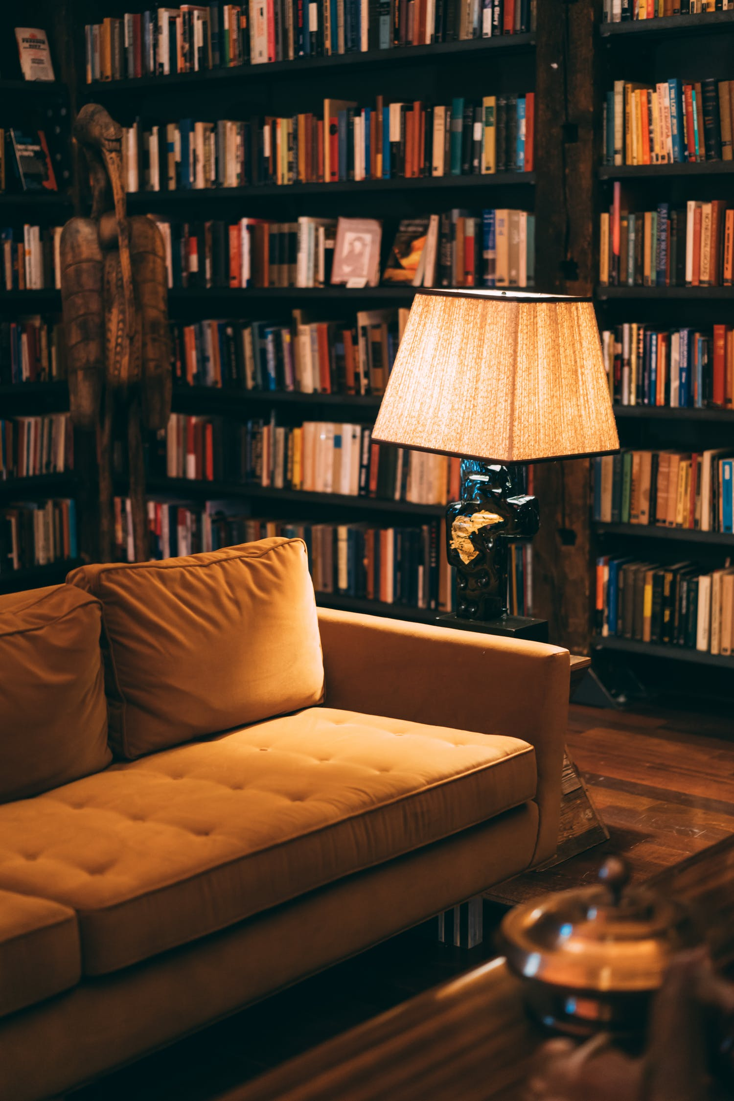 Cozy reading nook on couch with lamp and bookshelves