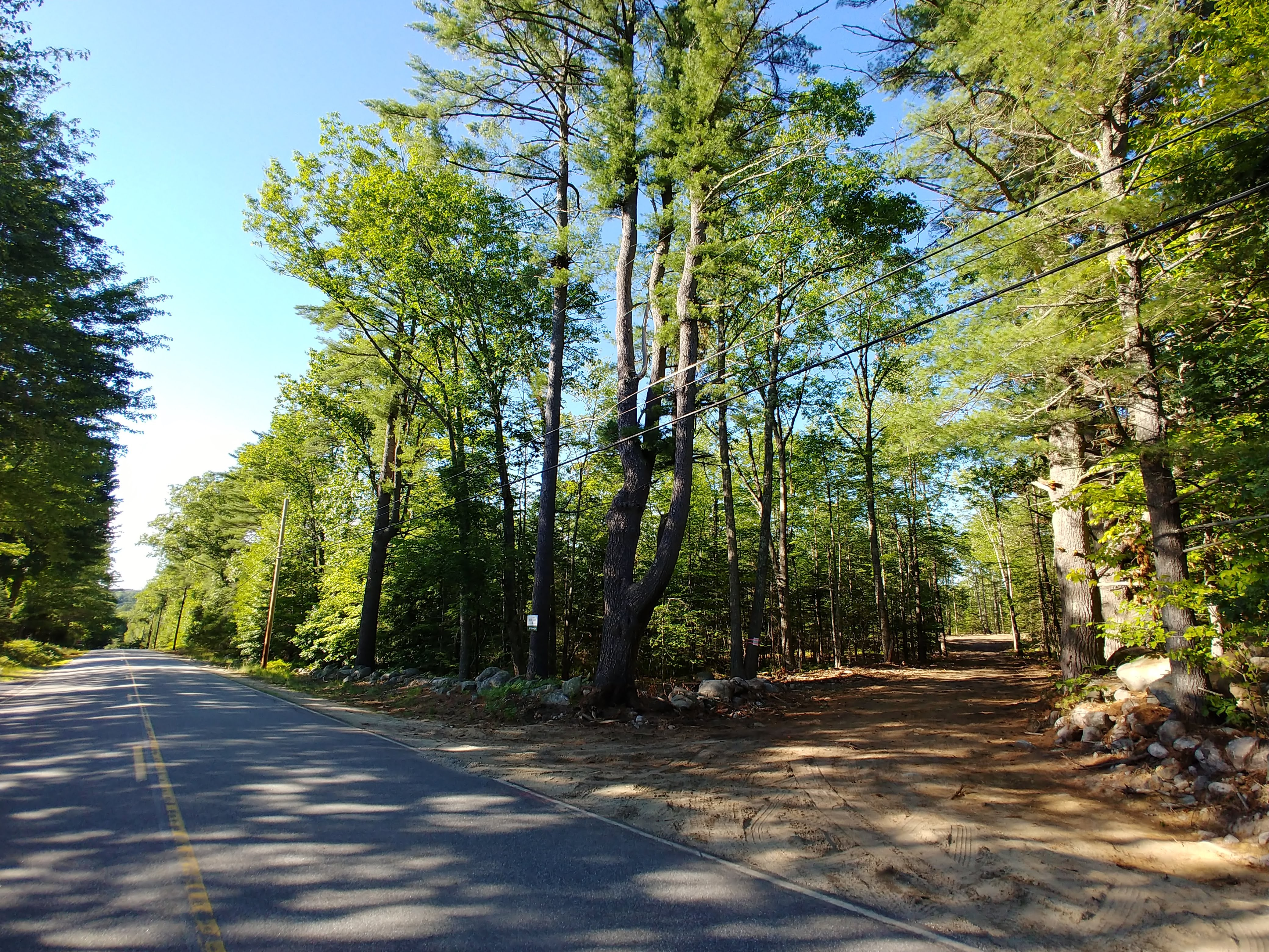 Factors in buying land in Maine