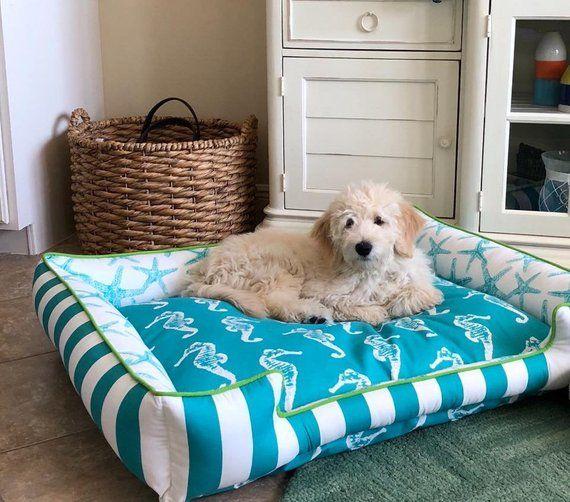 Dog on beach themed pillow
