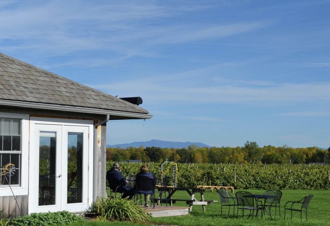 Snow Farm Vineyard in South Hero, Vermont