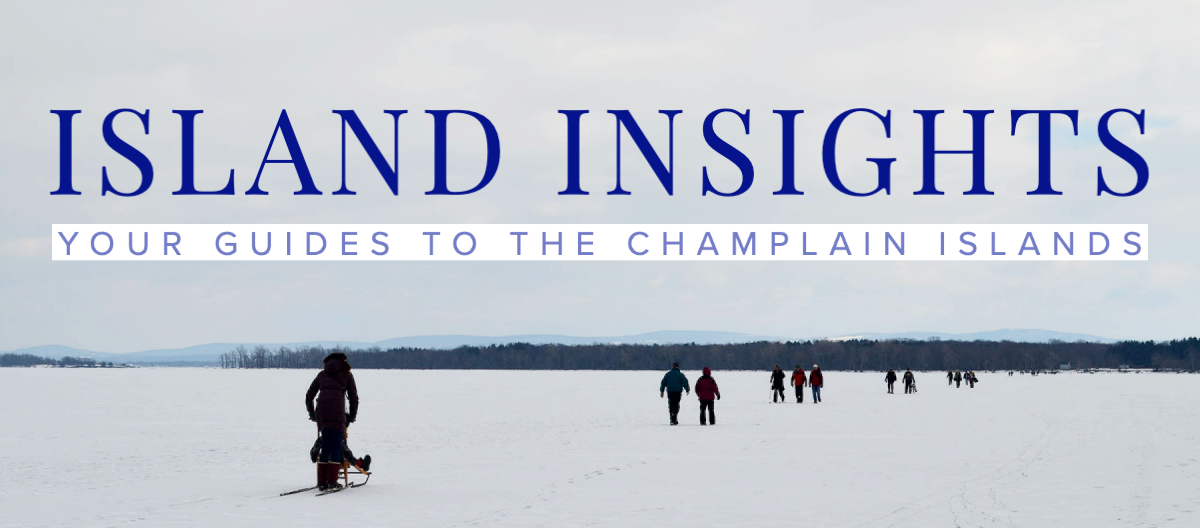 Newsletter graphic of frozen lake