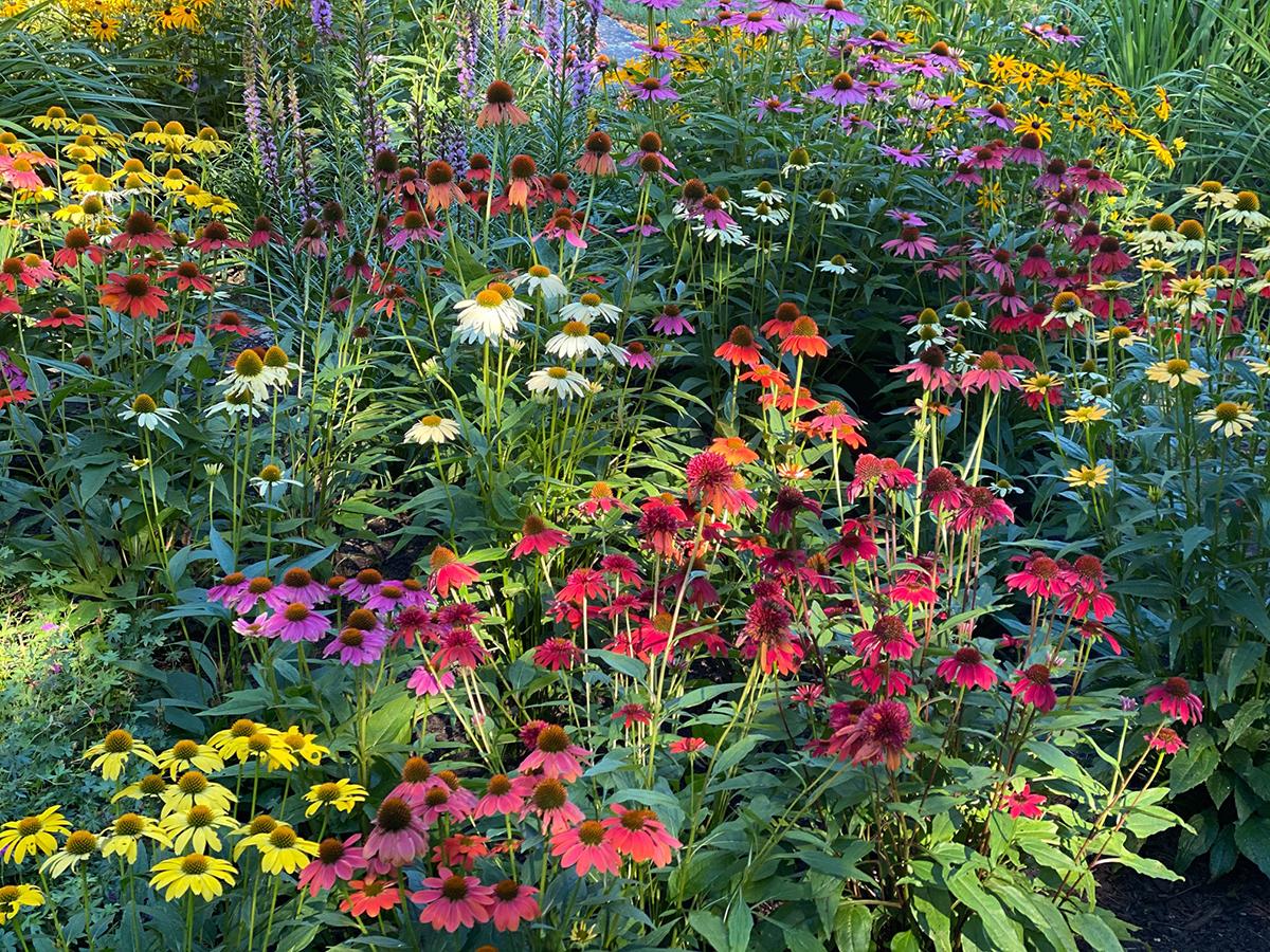 bridge of flowers shelburne falls massachusetts