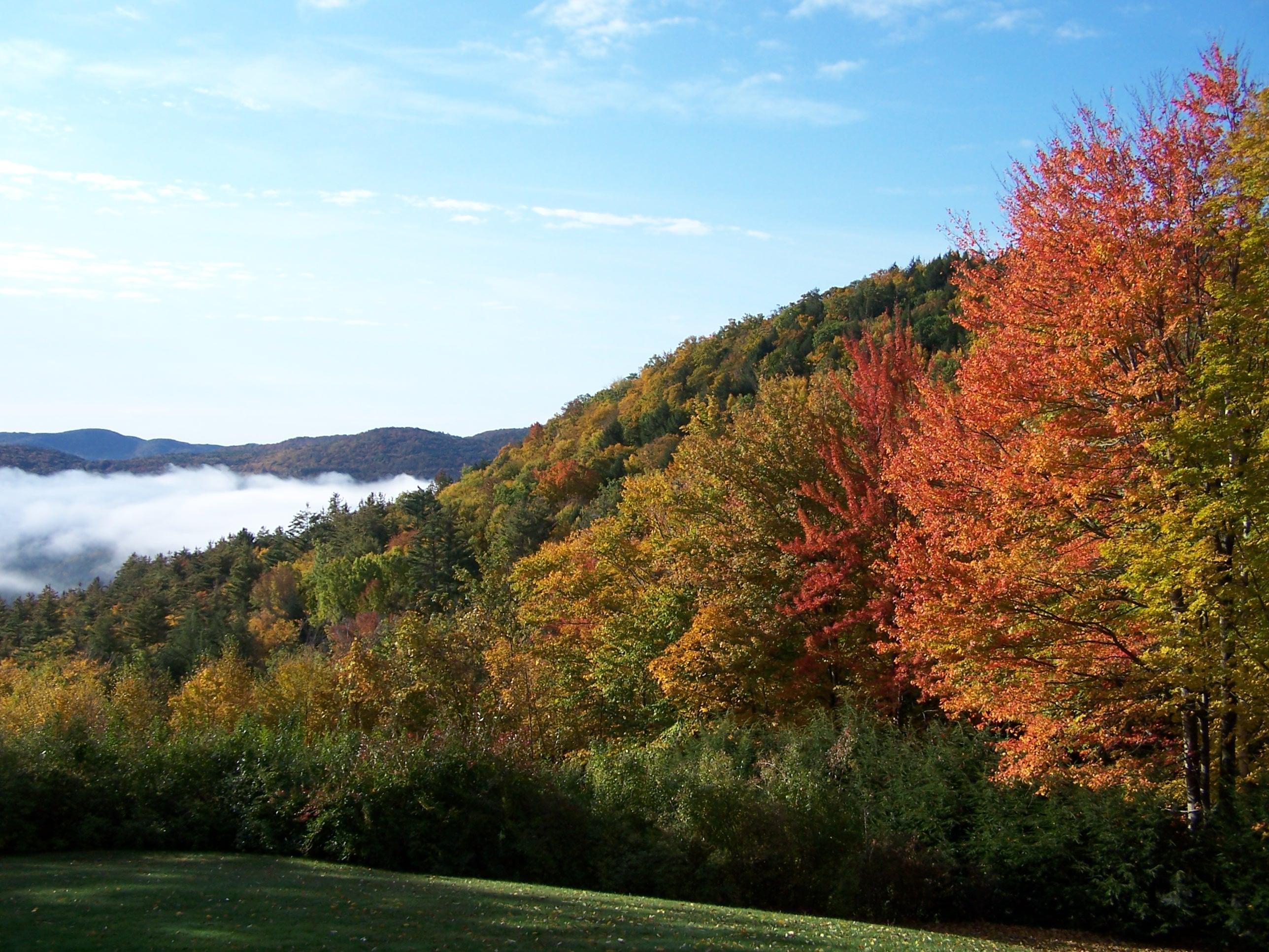 Foliage Western Massachusetts Franklin County
