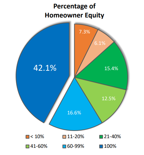 homeowner equity leverage