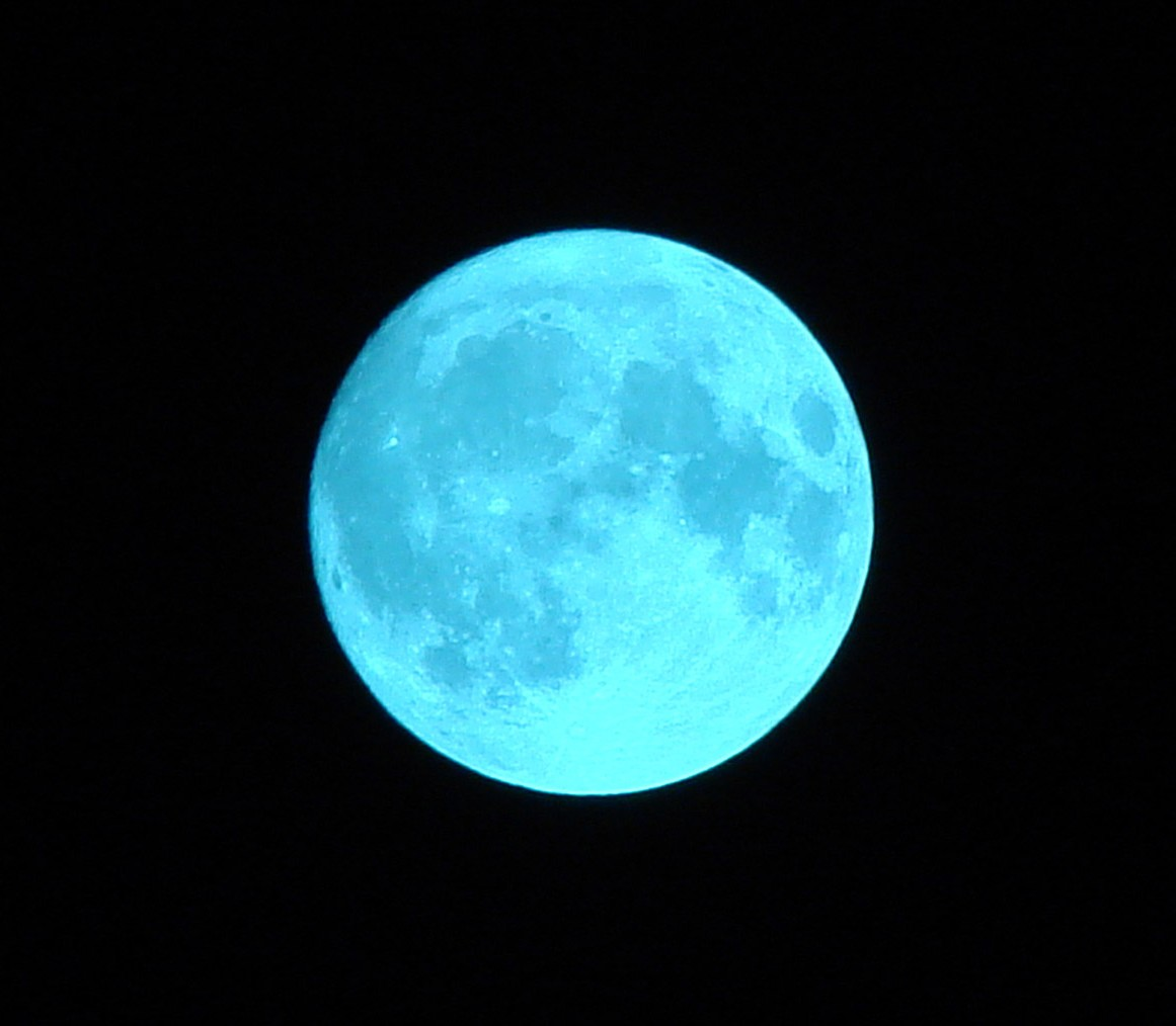 blue moon halloween 2020 mass audubon
